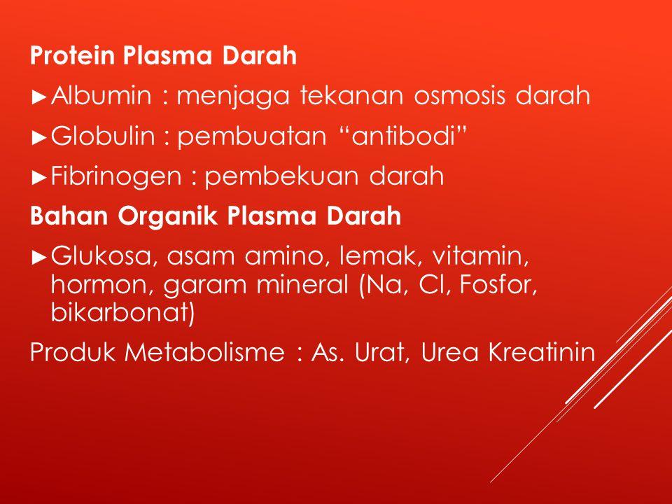 Protein Plasma Darah ► Albumin : menjaga tekanan osmosis darah ► Globulin : pembuatan antibodi ► Fibrinogen : pembekuan darah Bahan Organik Plasma Darah ► Glukosa, asam amino, lemak, vitamin, hormon, garam mineral (Na, Cl, Fosfor, bikarbonat) Produk Metabolisme : As.