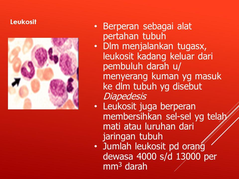 Leukosit Berperan sebagai alat pertahan tubuh Dlm menjalankan tugasx, leukosit kadang keluar dari pembuluh darah u/ menyerang kuman yg masuk ke dlm tubuh yg disebut Diapedesis Leukosit juga berperan membersihkan sel-sel yg telah mati atau luruhan dari jaringan tubuh Jumlah leukosit pd orang dewasa 4000 s/d 13000 per mm 3 darah
