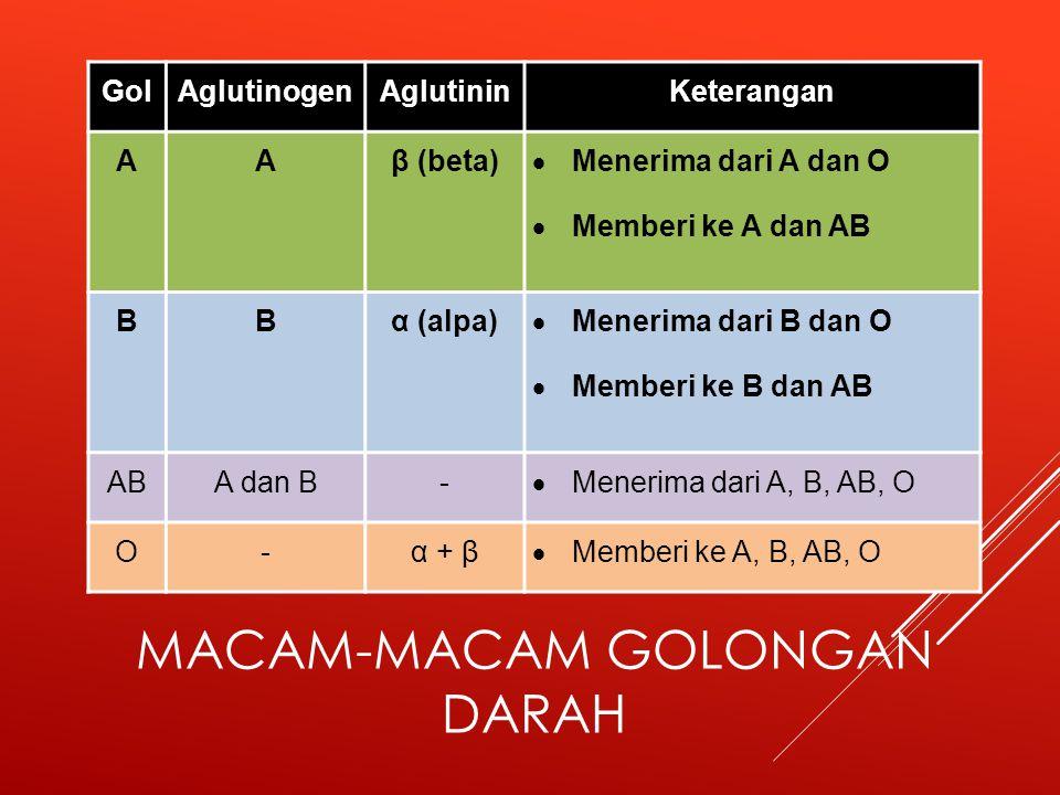 MACAM-MACAM GOLONGAN DARAH GolAglutinogenAglutininKeterangan AAβ (beta)  Menerima dari A dan O  Memberi ke A dan AB BBα (alpa)  Menerima dari B dan O  Memberi ke B dan AB ABA dan B-  Menerima dari A, B, AB, O O-α + β  Memberi ke A, B, AB, O