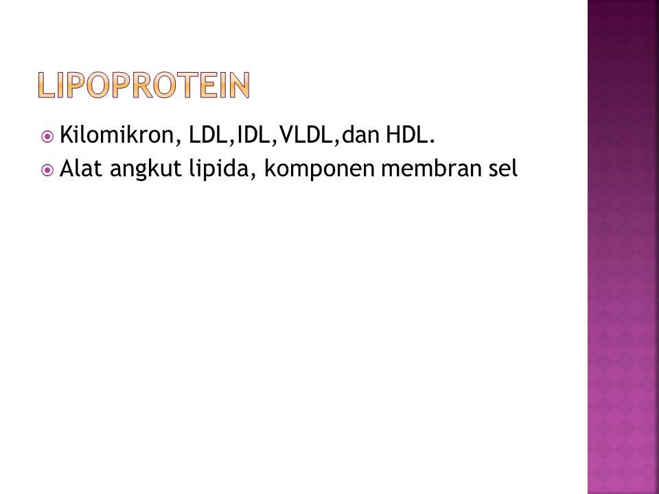  Kilomikron, LDL,IDL,VLDL,dan HDL.  Alat angkut lipida, komponen membran sel