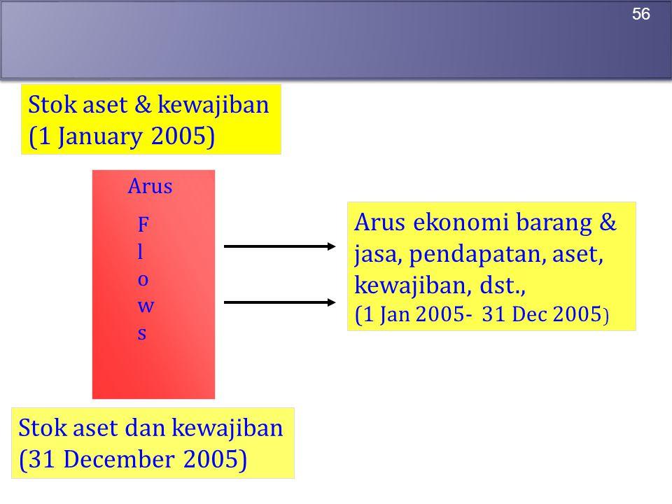 56 Stok aset & kewajiban (1 January 2005) Stok aset dan kewajiban (31 December 2005) Arus ekonomi barang & jasa, pendapatan, aset, kewajiban, dst., (1