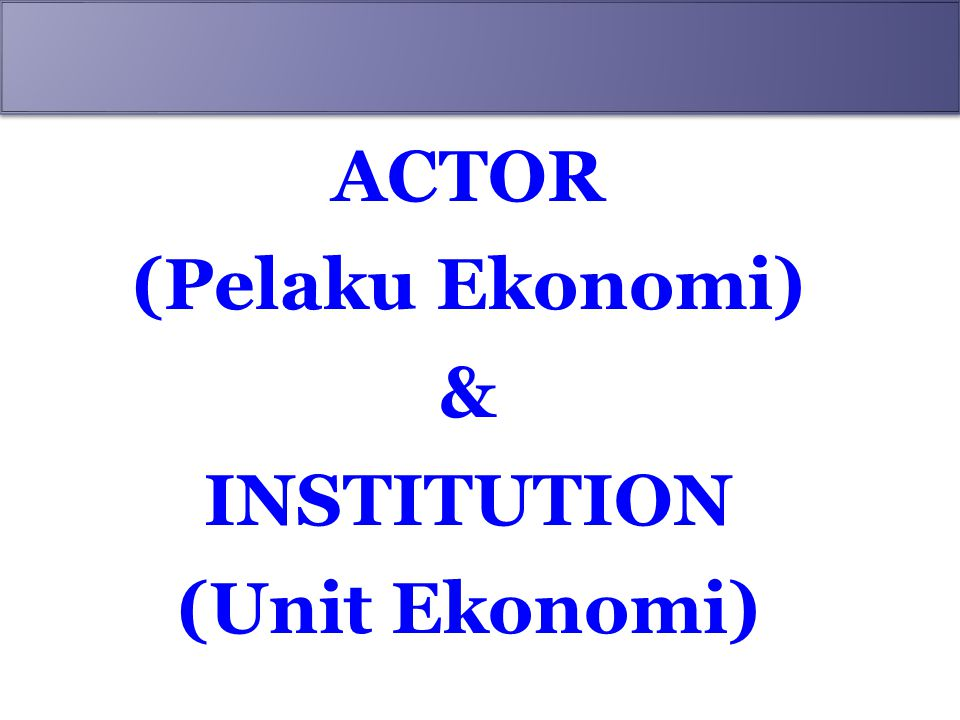 ACTOR (Pelaku Ekonomi) & INSTITUTION (Unit Ekonomi)