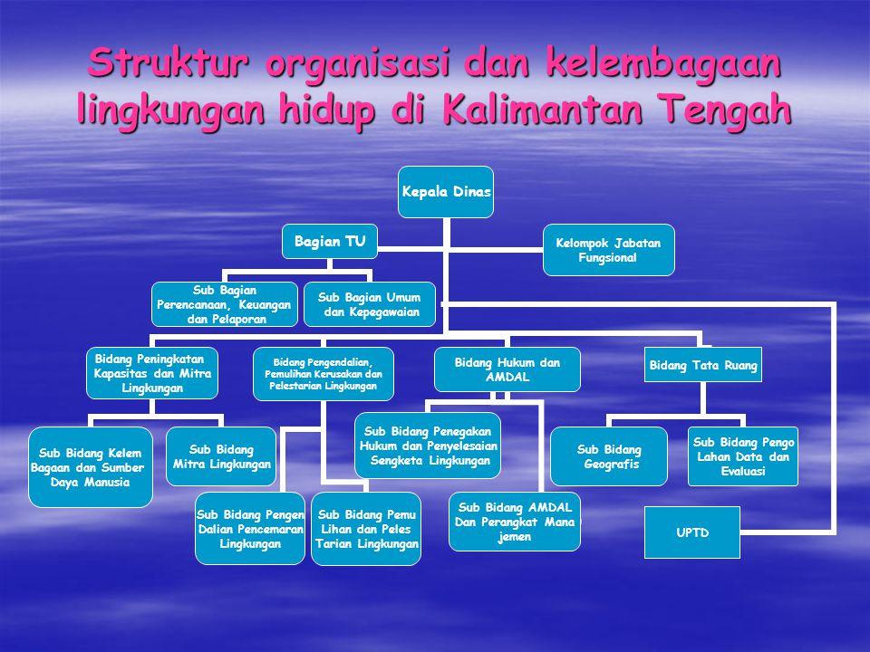 Struktur organisasi dan kelembagaan lingkungan hidup di Kalimantan Tengah Kepala Dinas Bidang Peningkatan Kapasitas dan Mitra Lingkungan Sub Bidang Ke
