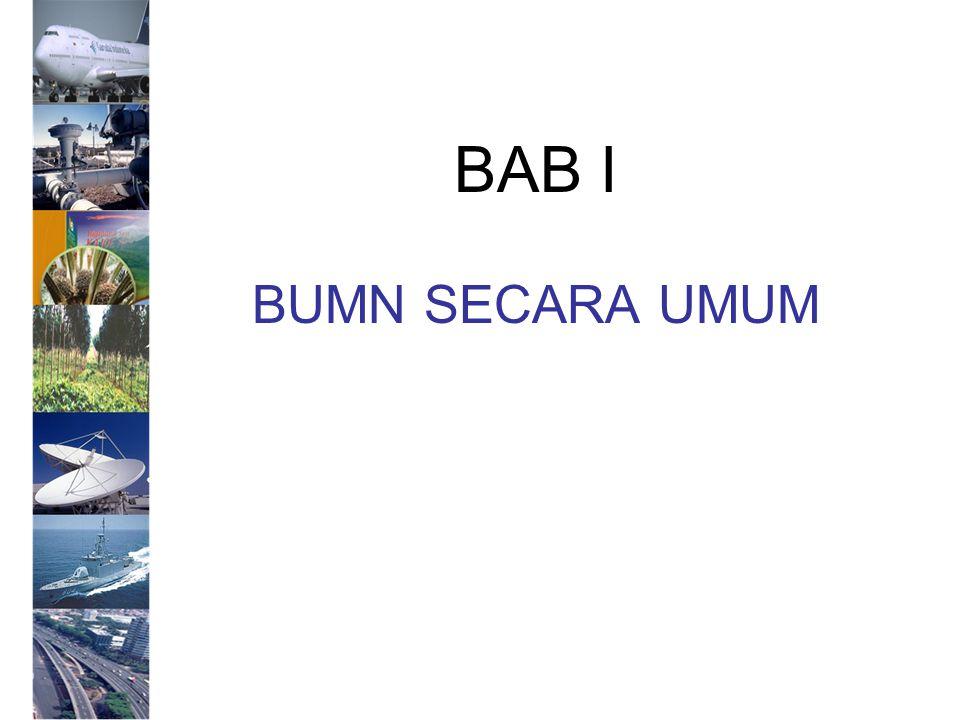 BAB I BUMN SECARA UMUM