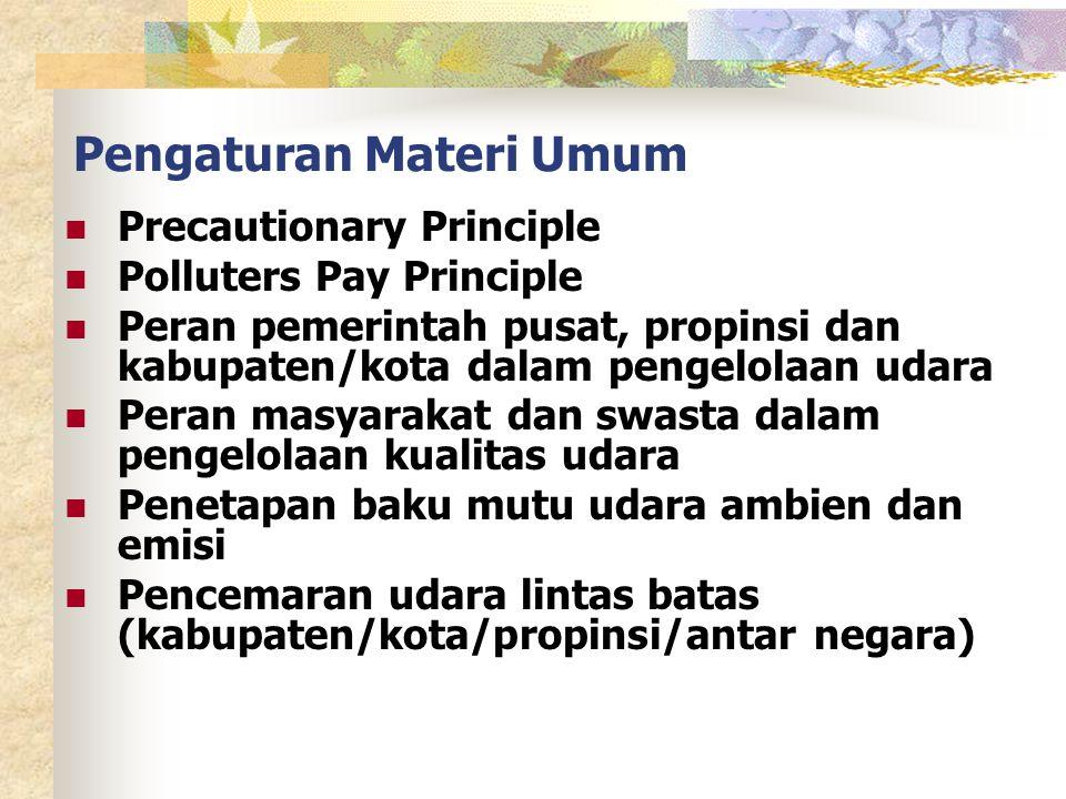 Pengaturan Materi Umum Precautionary Principle Polluters Pay Principle Peran pemerintah pusat, propinsi dan kabupaten/kota dalam pengelolaan udara Peran masyarakat dan swasta dalam pengelolaan kualitas udara Penetapan baku mutu udara ambien dan emisi Pencemaran udara lintas batas (kabupaten/kota/propinsi/antar negara)