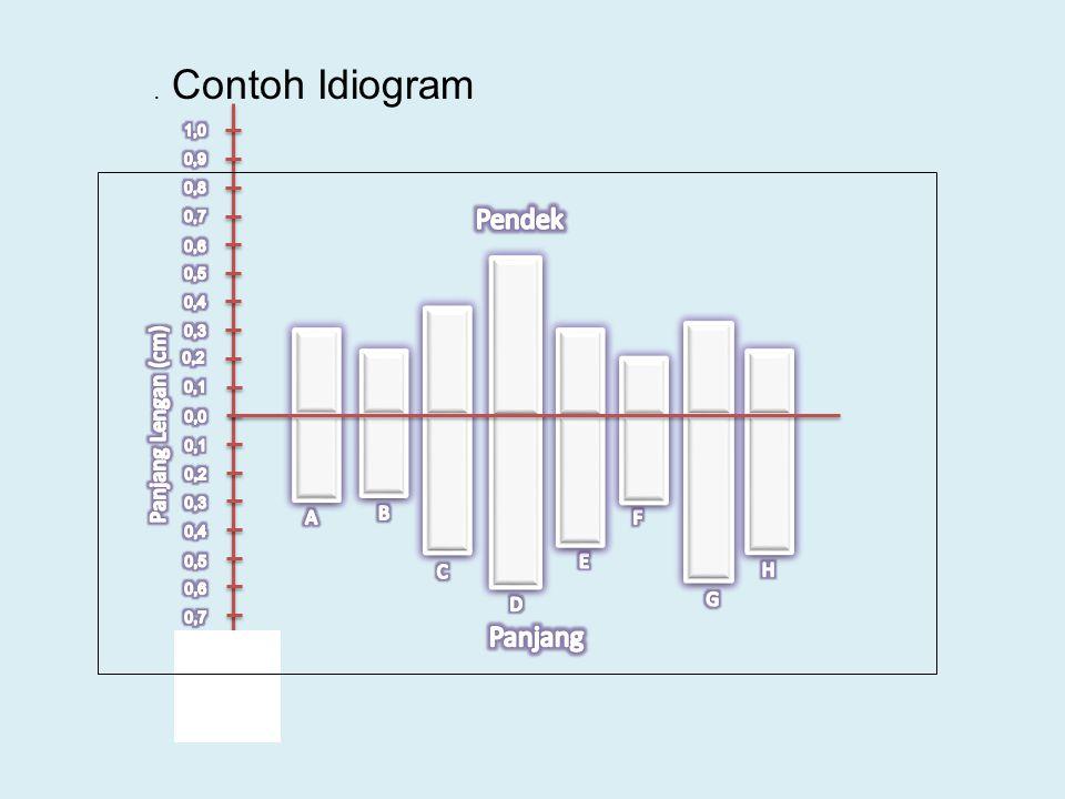 . Contoh Idiogram