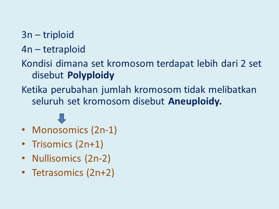 3n – triploid 4n – tetraploid Kondisi dimana set kromosom terdapat lebih dari 2 set disebut Polyploidy Ketika perubahan jumlah kromosom tidak melibatkan seluruh set kromosom disebut Aneuploidy.