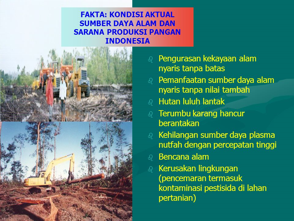 b Pengurasan kekayaan alam nyaris tanpa batas b Pemanfaatan sumber daya alam nyaris tanpa nilai tambah b Hutan luluh lantak b Terumbu karang hancur be