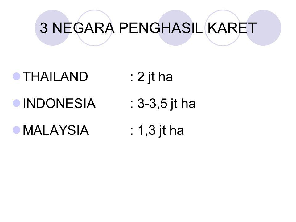 3 NEGARA PENGHASIL KARET THAILAND: 2 jt ha INDONESIA: 3-3,5 jt ha MALAYSIA: 1,3 jt ha