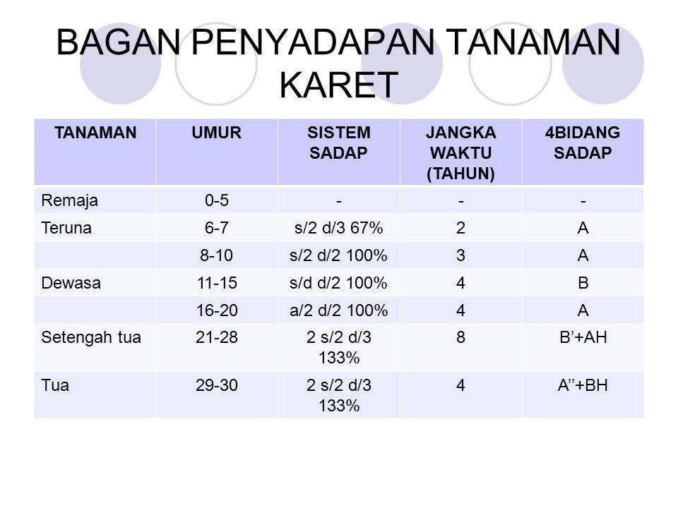 BAGAN PENYADAPAN TANAMAN KARET TANAMANUMURSISTEM SADAP JANGKA WAKTU (TAHUN) 4BIDANG SADAP Remaja0-5--- Teruna6-7s/2 d/3 67%2A 8-10s/2 d/2 100%3A Dewasa11-15s/d d/2 100%4B 16-20a/2 d/2 100%4A Setengah tua21-282 s/2 d/3 133% 8B'+AH Tua29-302 s/2 d/3 133% 4A''+BH