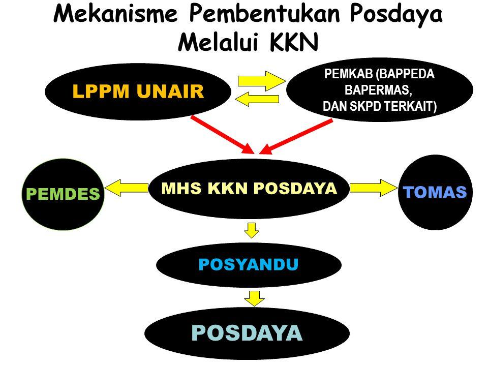 Mekanisme Pembentukan Posdaya Melalui KKN POSYANDU LPPM UNAIR PEMKAB (BAPPEDA BAPERMAS, DAN SKPD TERKAIT) POSDAYA MHS KKN POSDAYA TOMAS PEMDES