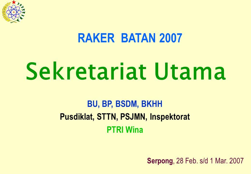 RAKER BATAN 2007 BU, BP, BSDM, BKHH Pusdiklat, STTN, PSJMN, Inspektorat PTRI Wina Serpong, 28 Feb.
