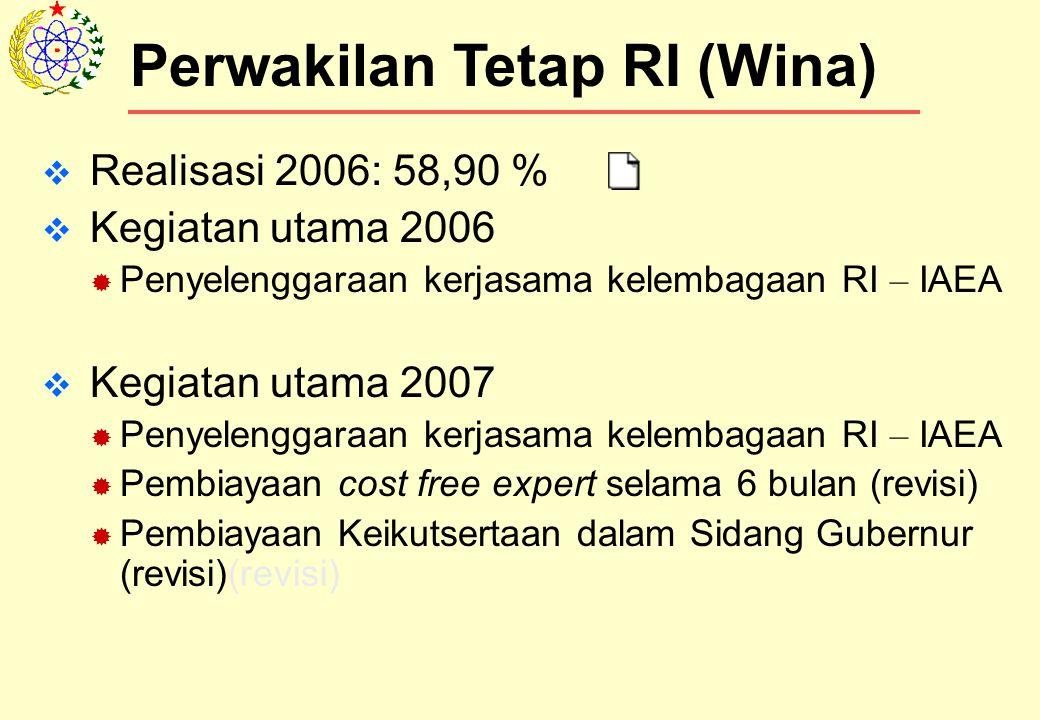  Realisasi 2006: 58,90 %  Kegiatan utama 2006  Penyelenggaraan kerjasama kelembagaan RI – IAEA  Kegiatan utama 2007  Penyelenggaraan kerjasama kelembagaan RI – IAEA  Pembiayaan cost free expert selama 6 bulan (revisi)  Pembiayaan Keikutsertaan dalam Sidang Gubernur (revisi)(revisi) Perwakilan Tetap RI (Wina)