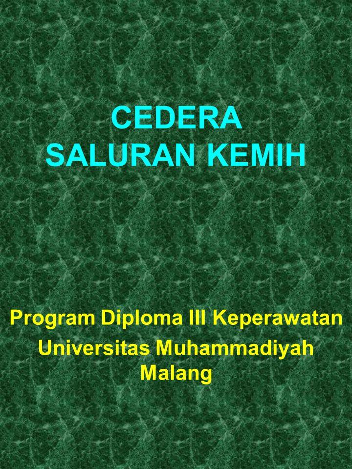 CEDERA SALURAN KEMIH Program Diploma III Keperawatan Universitas Muhammadiyah Malang