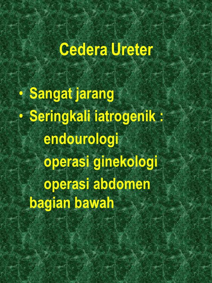 Cedera Ureter Sangat jarang Seringkali iatrogenik : endourologi operasi ginekologi operasi abdomen bagian bawah