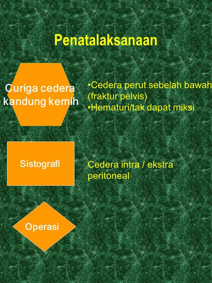 Penatalaksanaan Curiga cedera kandung kemih Sistografi Operasi Cedera perut sebelah bawah (fraktur pelvis) Hematuri/tak dapat miksi Cedera intra / eks