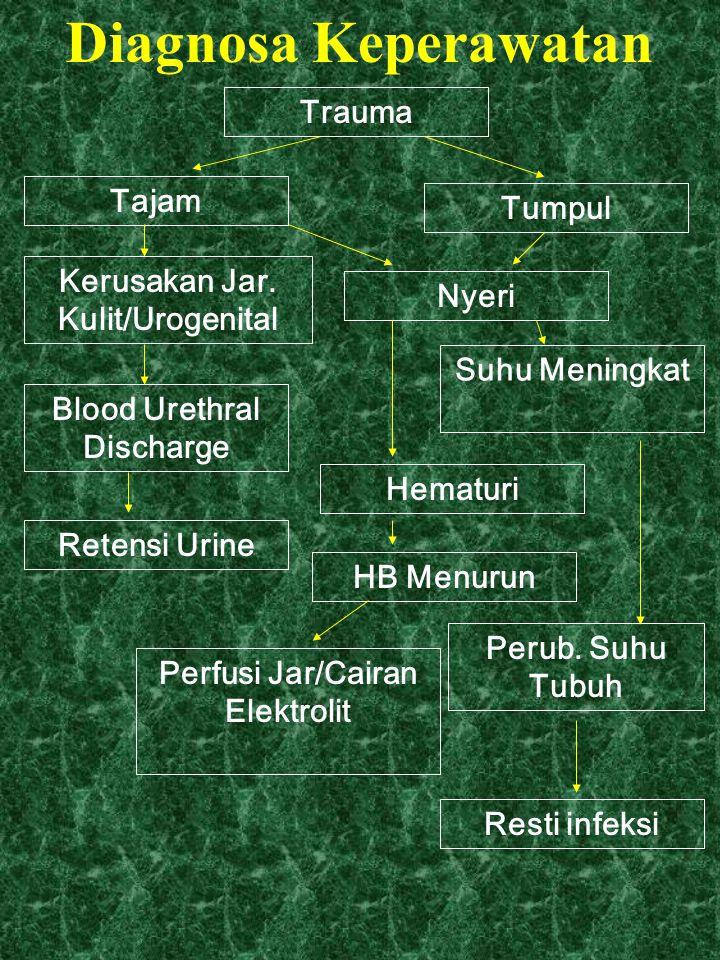 Diagnosa Keperawatan Trauma Tajam Tumpul Kerusakan Jar. Kulit/Urogenital Blood Urethral Discharge Retensi Urine Nyeri Suhu Meningkat Hematuri HB Menur