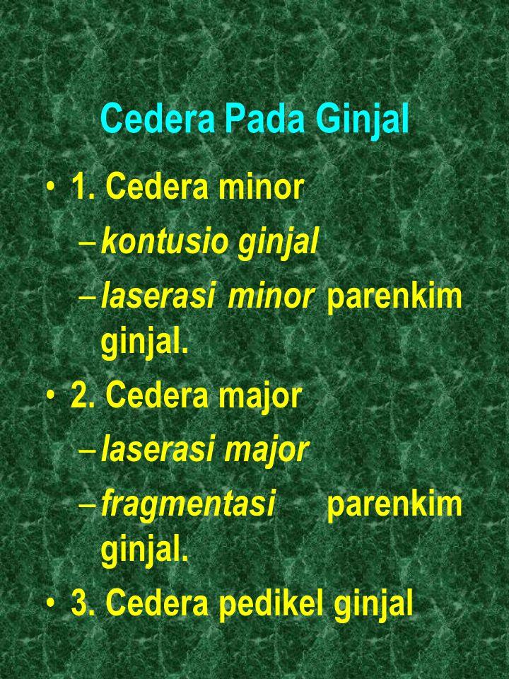 Cedera Pada Ginjal 1. Cedera minor – kontusio ginjal – laserasi minor parenkim ginjal. 2. Cedera major – laserasi major – fragmentasi parenkim ginjal.