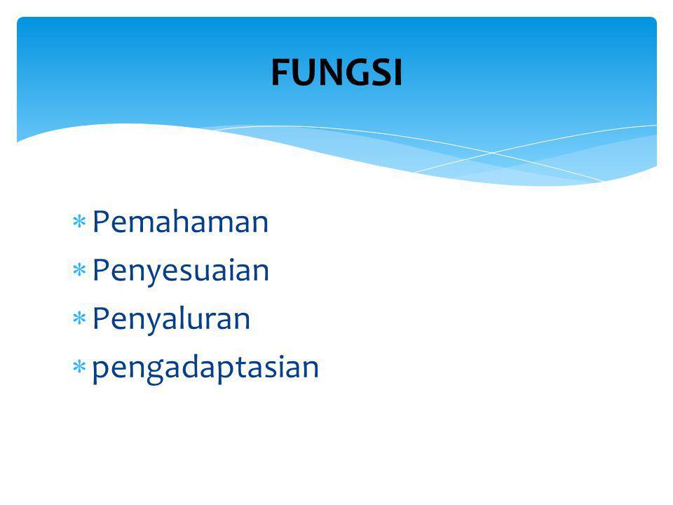  Pemahaman  Penyesuaian  Penyaluran  pengadaptasian FUNGSI
