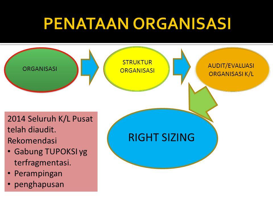 ORGANISASI STRUKTUR ORGANISASI AUDIT/EVALUASI ORGANISASI K/L RIGHT SIZING 2014 Seluruh K/L Pusat telah diaudit.