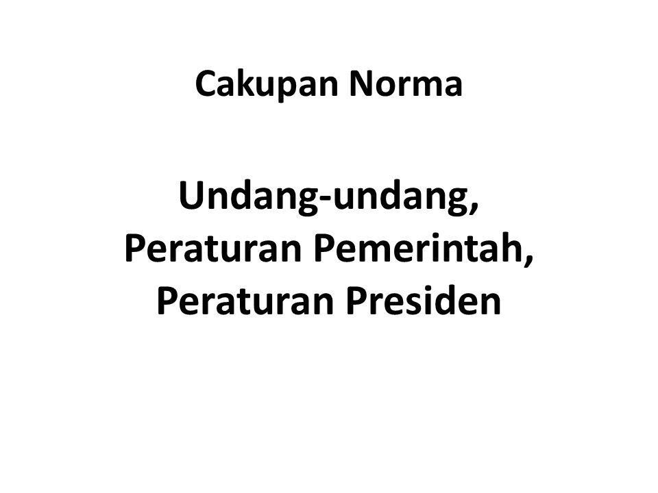 Cakupan Norma Undang-undang, Peraturan Pemerintah, Peraturan Presiden