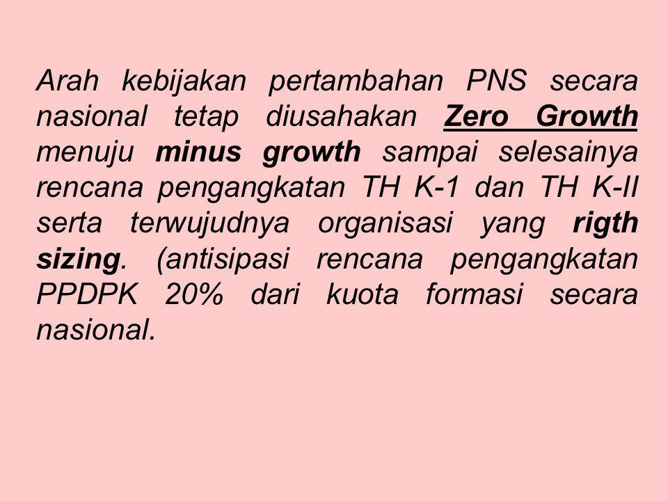 ARAH KEBIJAKAN UMUM FORMASI PNS TA 2013 Kebijakan umum alokasi formasi adalah Zero Growth secara Nasional dalam arti alokasi formasi nasional sebesar