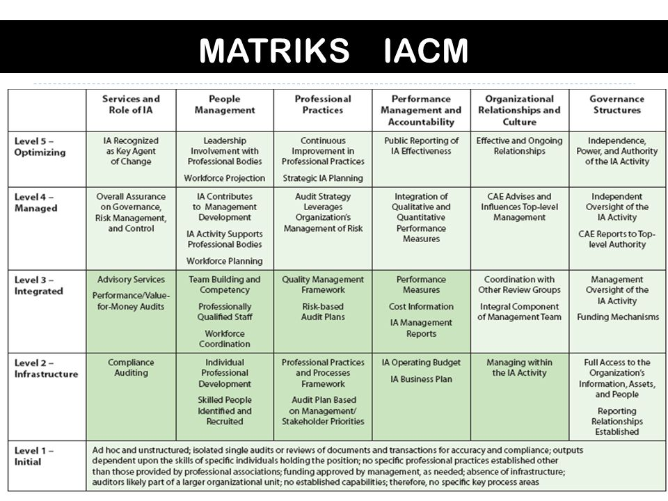 MATRIKS IACM