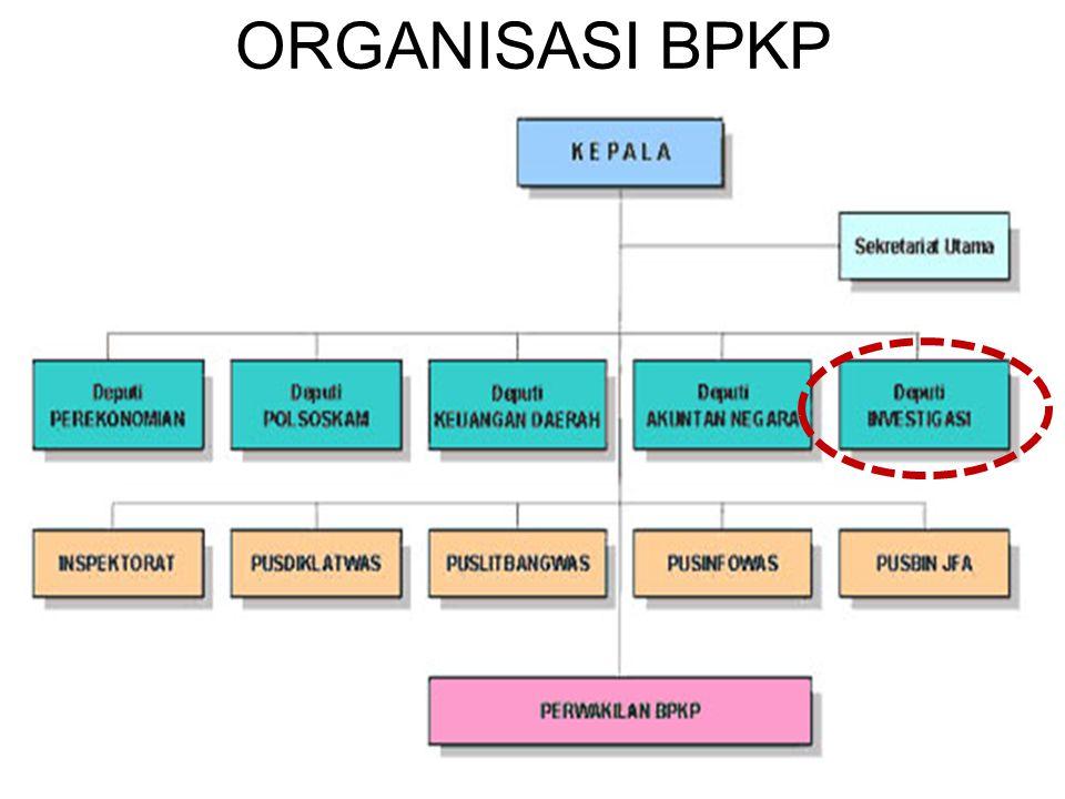 ORGANISASI BPKP