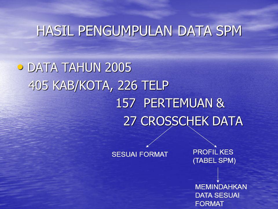 CAKUPAN PENGUMPULAN DATA Data SPM 2005, Data SPM 2005, 405/440 kab ( 92,05%)405/440 kab Diperoleh dari : Diperoleh dari :  Telepon 226 (51,36 %)  Pe