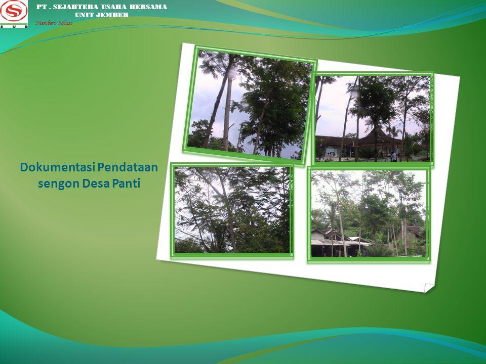Dokumentasi Pendataan sengon Desa Manggisan PT. SEJAHTERA USAHA BERSAMA UNIT JEMBER Memberi Solusi