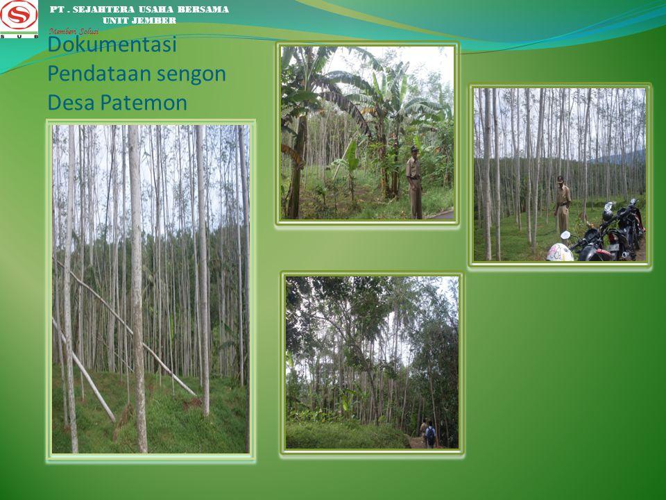 Dokumentasi Pendataan sengon Desa Patemon PT. SEJAHTERA USAHA BERSAMA UNIT JEMBER Memberi Solusi