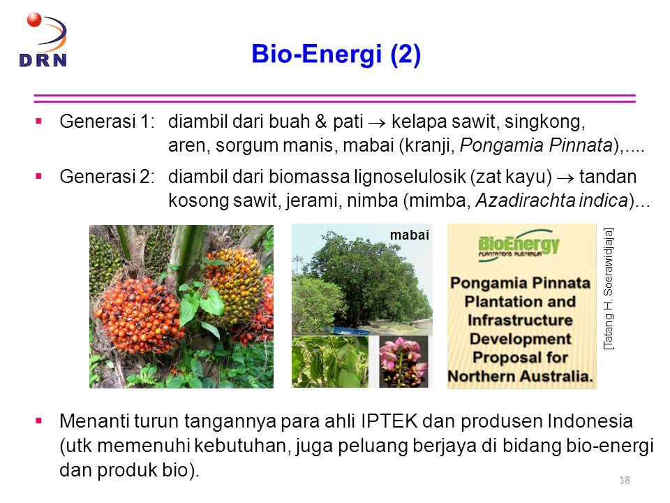 Bio-Energi (2)  Generasi 1:diambil dari buah & pati  kelapa sawit, singkong, aren, sorgum manis, mabai (kranji, Pongamia Pinnata),....  Generasi 2: