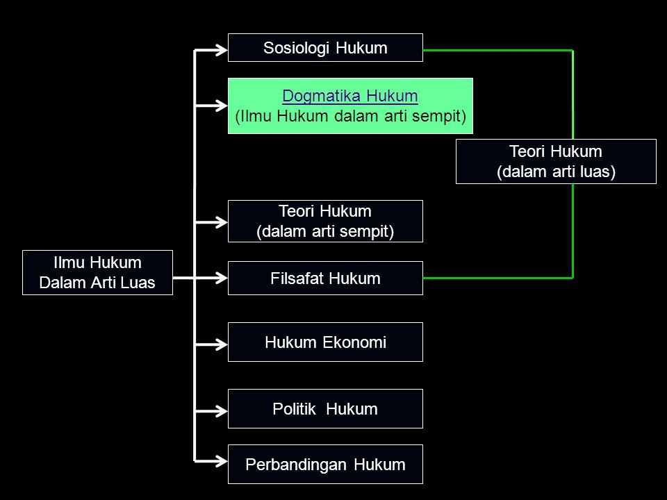 Ilmu Hukum Dalam Arti Luas Sosiologi Hukum Dogmatika Hukum (Ilmu Hukum dalam arti sempit) Teori Hukum (dalam arti sempit) Filsafat Hukum Hukum Ekonomi