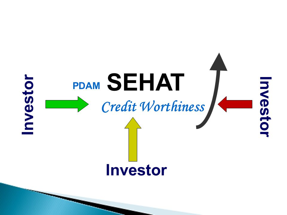 PDAM SEHAT Credit Worthiness Investor