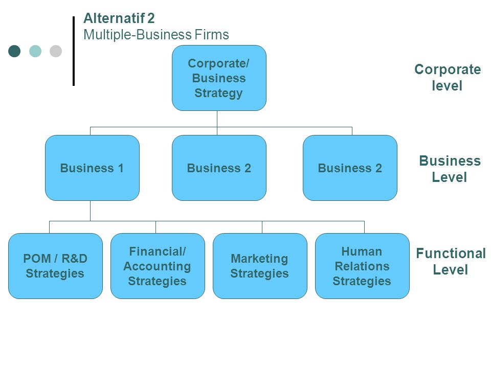 Alternatif 2 Multiple-Business Firms Corporate level Business Level Functional Level Corporate/ Business Strategy Business 2 Business 1 Human Relation