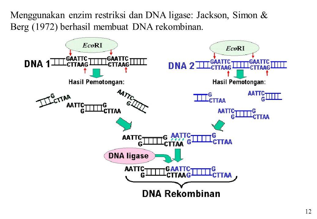 12 Menggunakan enzim restriksi dan DNA ligase: Jackson, Simon & Berg (1972) berhasil membuat DNA rekombinan.