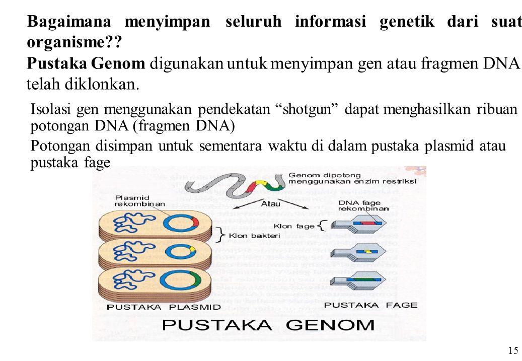 Bagaimana menyimpan seluruh informasi genetik dari suatu organisme?? Pustaka Genom digunakan untuk menyimpan gen atau fragmen DNA yang telah diklonkan