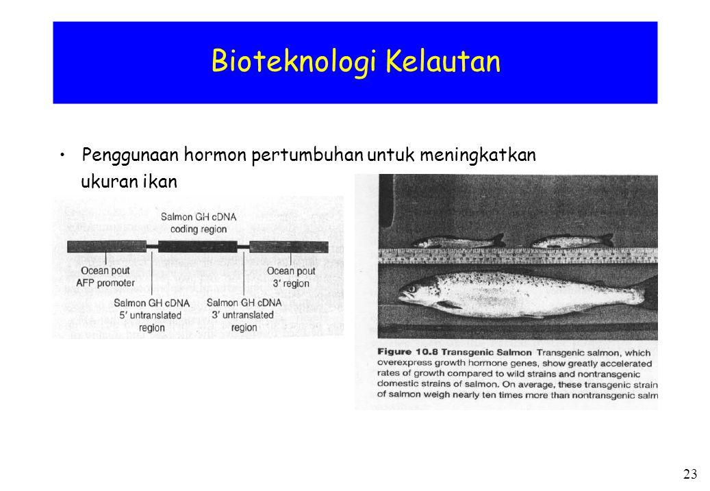 Bioteknologi Kelautan Penggunaan hormon pertumbuhan untuk meningkatkan ukuran ikan 23