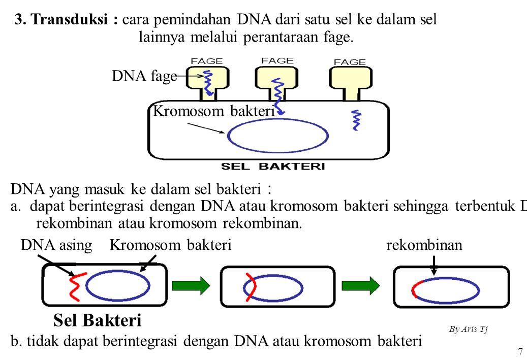 3. Transduksi : cara pemindahan DNA dari satu sel ke dalam sel 7 lainnya melalui perantaraan fage. DNA fage Kromosom bakteri DNA yang masuk ke dalam s
