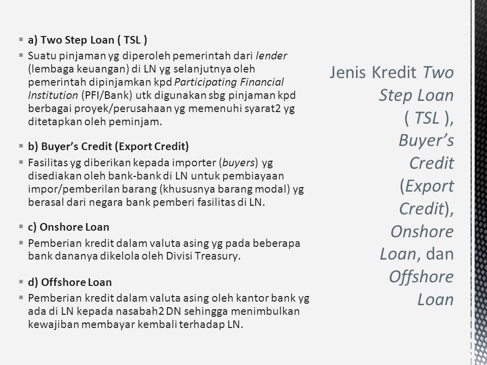  a) Two Step Loan ( TSL )  Suatu pinjaman yg diperoleh pemerintah dari lender (lembaga keuangan) di LN yg selanjutnya oleh pemerintah dipinjamkan kp