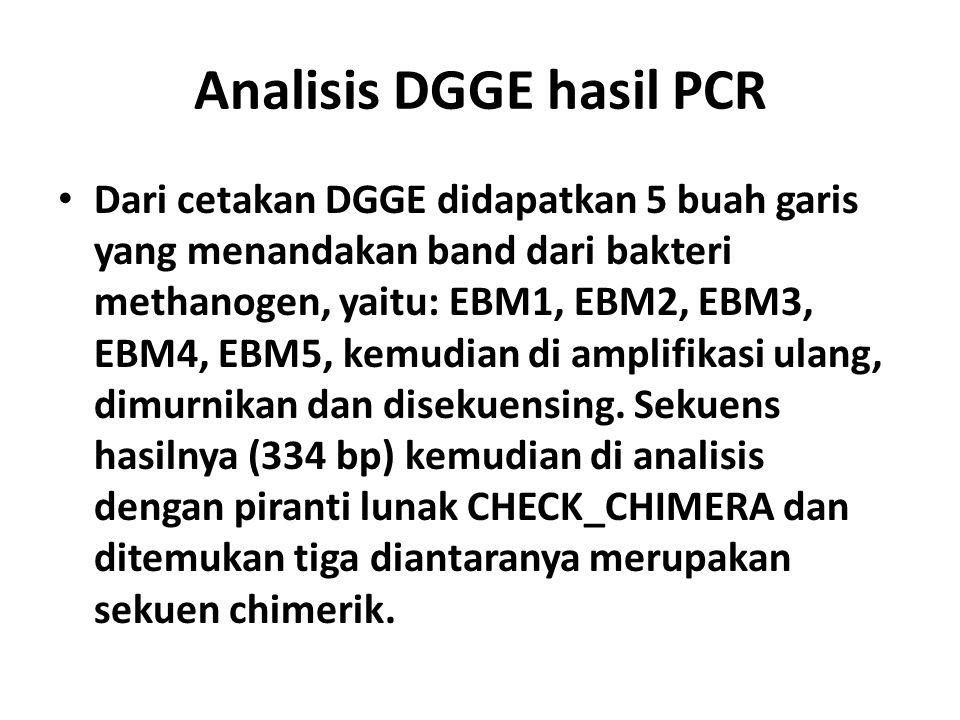 Analisis DGGE hasil PCR Dari cetakan DGGE didapatkan 5 buah garis yang menandakan band dari bakteri methanogen, yaitu: EBM1, EBM2, EBM3, EBM4, EBM5, k