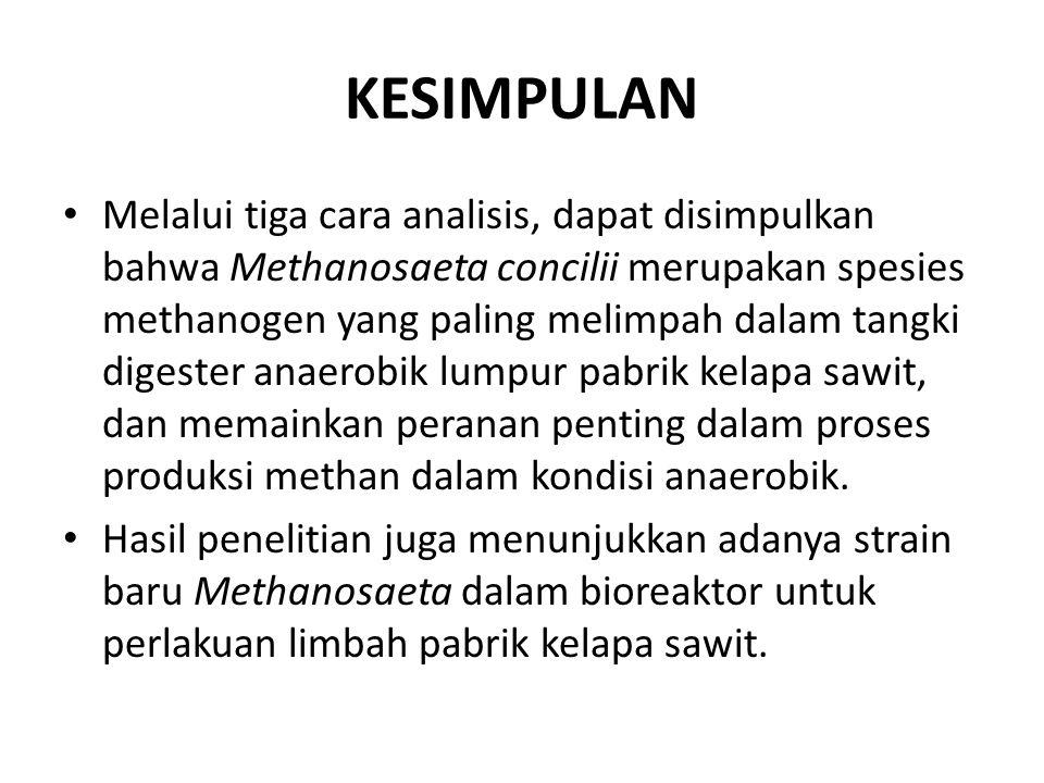 KESIMPULAN Melalui tiga cara analisis, dapat disimpulkan bahwa Methanosaeta concilii merupakan spesies methanogen yang paling melimpah dalam tangki di