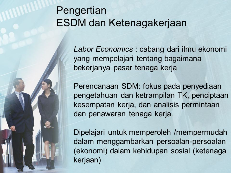 Labor Economics : cabang dari ilmu ekonomi yang mempelajari tentang bagaimana bekerjanya pasar tenaga kerja Perencanaan SDM: fokus pada penyediaan pen