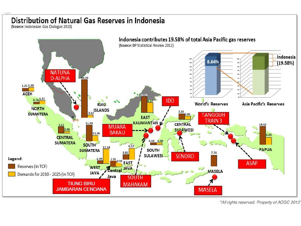 10 PRIVATE AND CONFIDENTIAL 201420152016201720182019 Banyu Urip UL Peciko-7C Kepodang Senoro Area MTD GG Blok A YY Bukit Tua South MHK ph3 Ande-Ande Lumut IDD Bangka MDA-MBH Jangkrik NE Jangkrik IDD Gendalo Jam-TBR IDD Gehem Abadi Tangguh Train-3 OIL FIELD GAS FIELD Future projects are dominated by gas Outlook Indonesia Major Oil & Gas Project In the next several years, upstream oil & gas project will be dominated by offshore gas project Bekapai 2B Madura BD