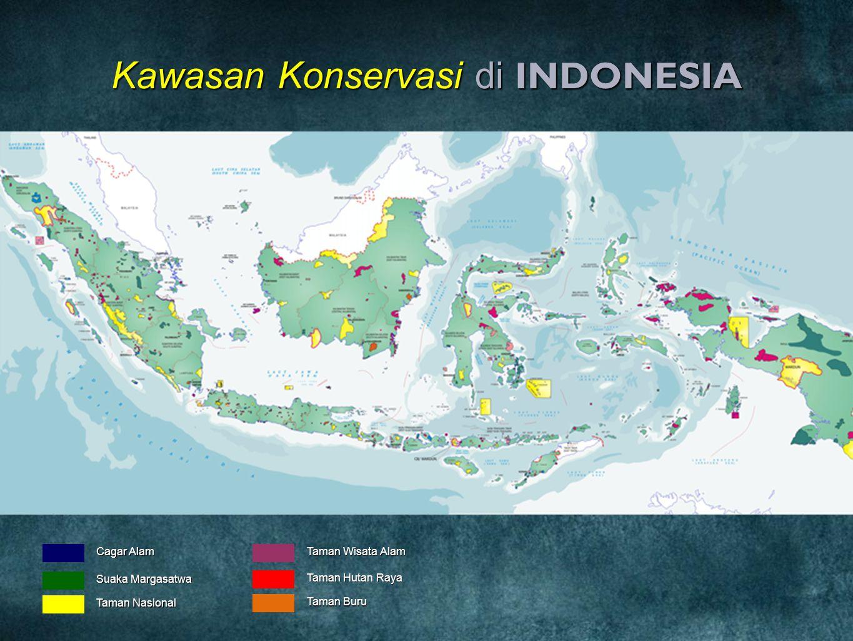 Kawasan Konservasi di INDONESIA Cagar Alam Suaka Margasatwa Taman Nasional Taman Wisata Alam Taman Hutan Raya Taman Buru