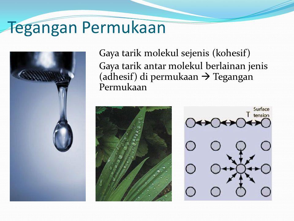 Fenomena Permukaan Molekul-molekul di permukaan mengalami gaya tarik antar mole- kular di sekitarnya baik dengan sesama molekul (kohesif) mau- pun dengan molekul-molekul lain di atasnya (adhesif) Molekul-molekul di bagian bawah mengalami gaya tarik dengan kekuatan yang sama ke segala arah oleh sesama molekul