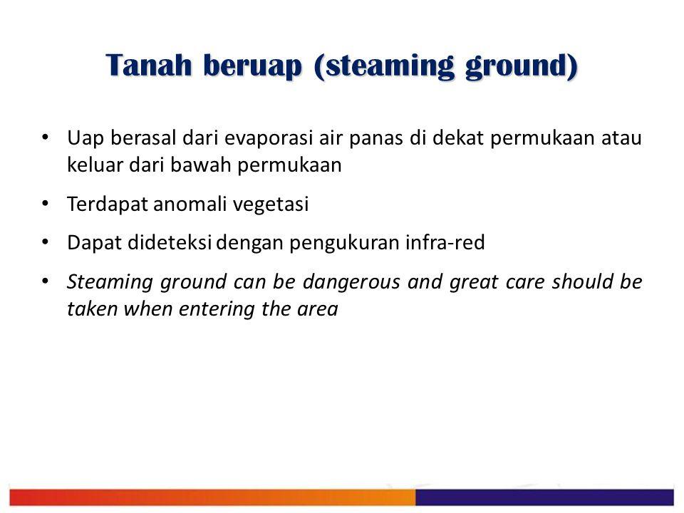 Tanah beruap (steaming ground) Uap berasal dari evaporasi air panas di dekat permukaan atau keluar dari bawah permukaan Terdapat anomali vegetasi Dapa