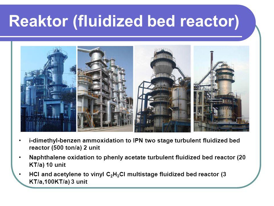 Reaktor (fluidized bed reactor) i-dimethyl-benzen ammoxidation to IPN two stage turbulent fluidized bed reactor (500 ton/a) 2 unit Naphthalene oxidati