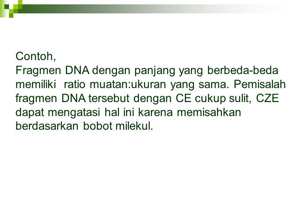 Contoh, Fragmen DNA dengan panjang yang berbeda-beda memiliki ratio muatan:ukuran yang sama. Pemisalah fragmen DNA tersebut dengan CE cukup sulit, CZE