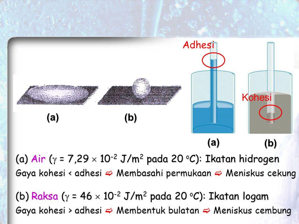 (a) (a) (b) (b) (b) Raksa (  = 46  10 -2 J/m 2 pada 20 o C): Ikatan logam Gaya kohesi > adhesi  Membentuk bulatan  Meniskus cembung (a) Air (  = 7,29  10 -2 J/m 2 pada 20 o C): Ikatan hidrogen Gaya kohesi < adhesi  Membasahi permukaan  Meniskus cekung Adhesi Kohesi